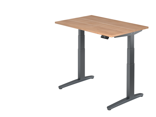 Sitz-Steh-Schreibtisch elektrisch 120 x 80 cm Nussbaum / Graphit
